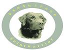 金圣拉布拉多犬舍网站